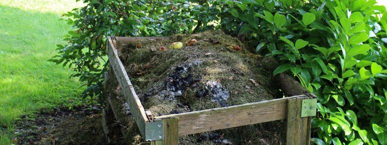 Komposthaufen Beispiel mit Nashornkäfer