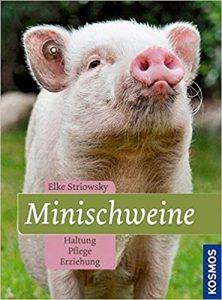 Minischwein Buch für Anfänger