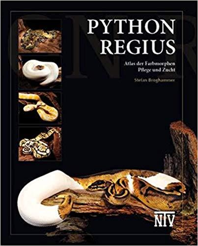Python regius Farbmorphen