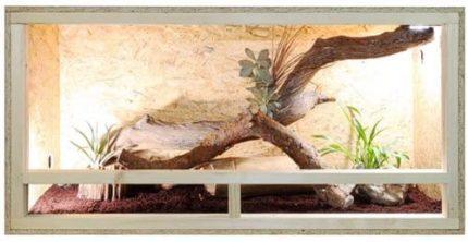 Leopardgecko Unterbringung
