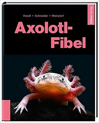 Axolotl Fibel