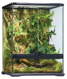 Terrarium Spinnen Glas