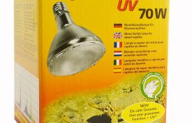 Bartagame Metalldampflampe