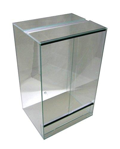Für die Kronengecko Haltung braucht man ein geeignetes Kronengecko Terrarium