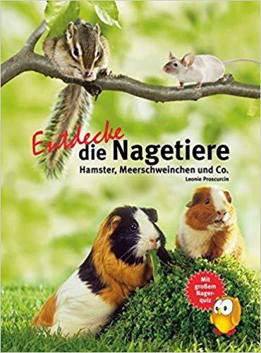 Baumstreifenhörnchen Buch