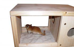 Sand-Badestelle für die Baumstreifenhörnchen