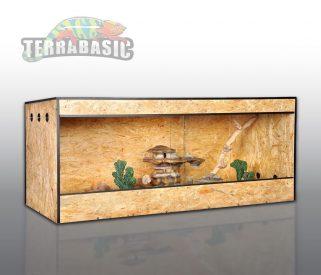 Kornnatter Haltung Terrarium