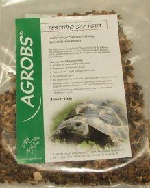 griechische Landschildkröte Futter
