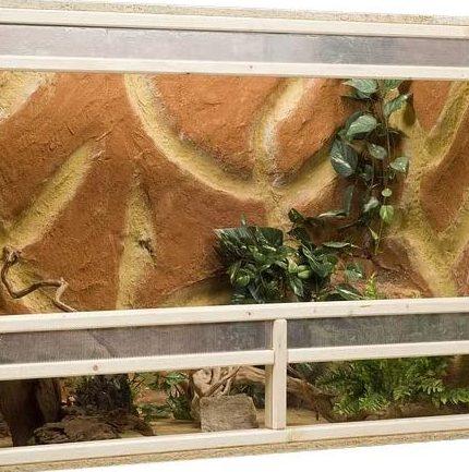 Das perfekte Gecko Terrarium kaufen - unsere Tipps