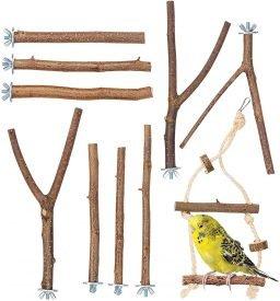 Halsbandsittich Holzstangen