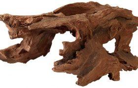 Pfeilgiftfrosch Holz
